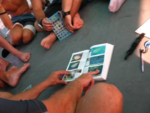 Padi Specitilty Training